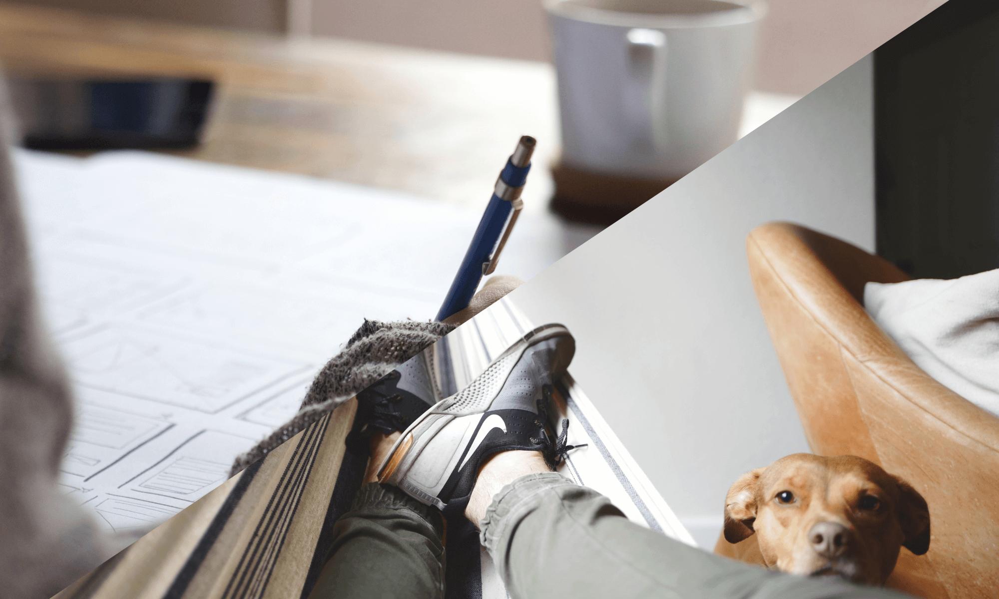 Procrastination Relaxation Studying Studieren Lernen