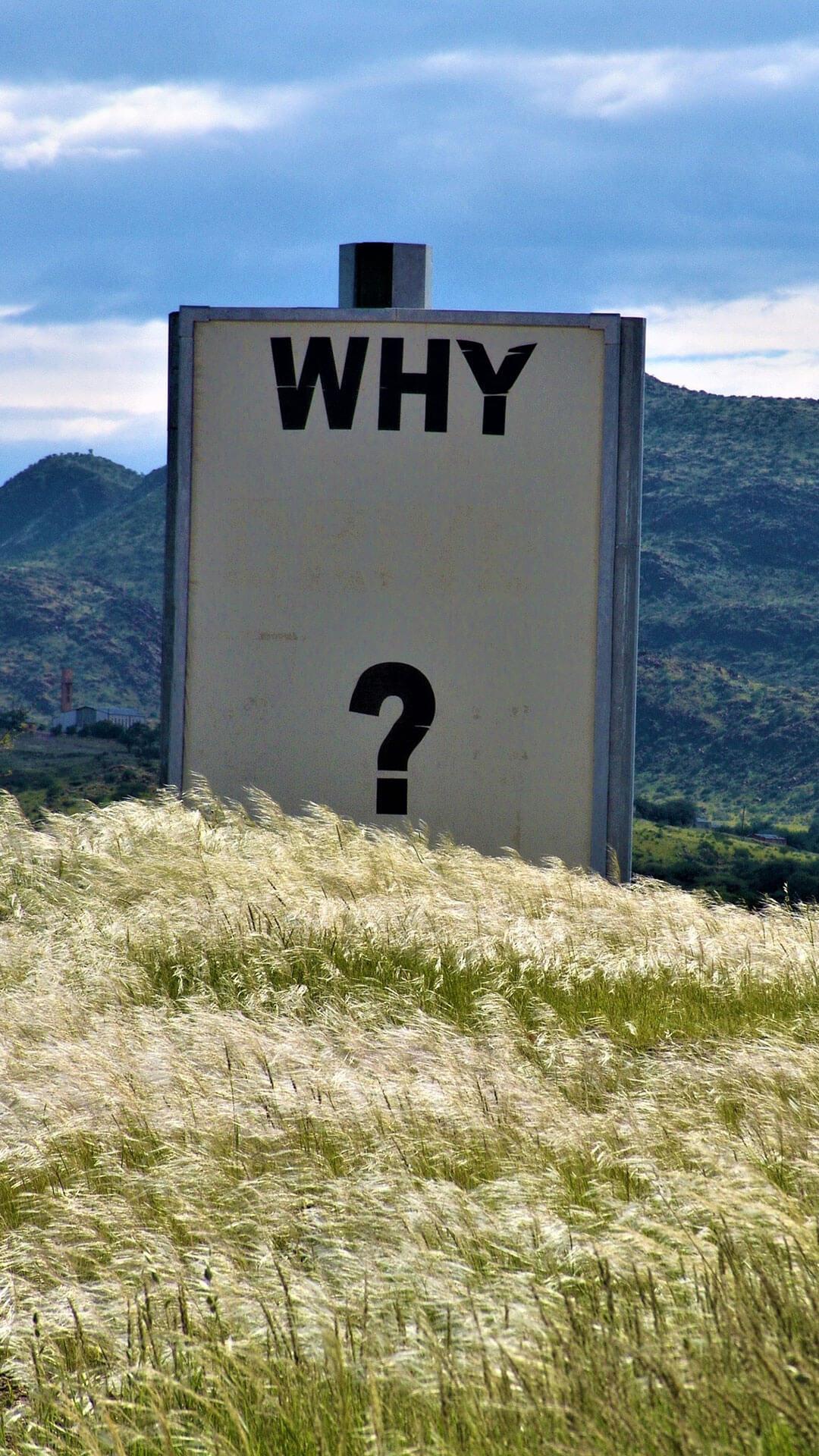 Warum scheitern wir?