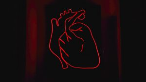 Herzklopfen Liebe und Aufregung