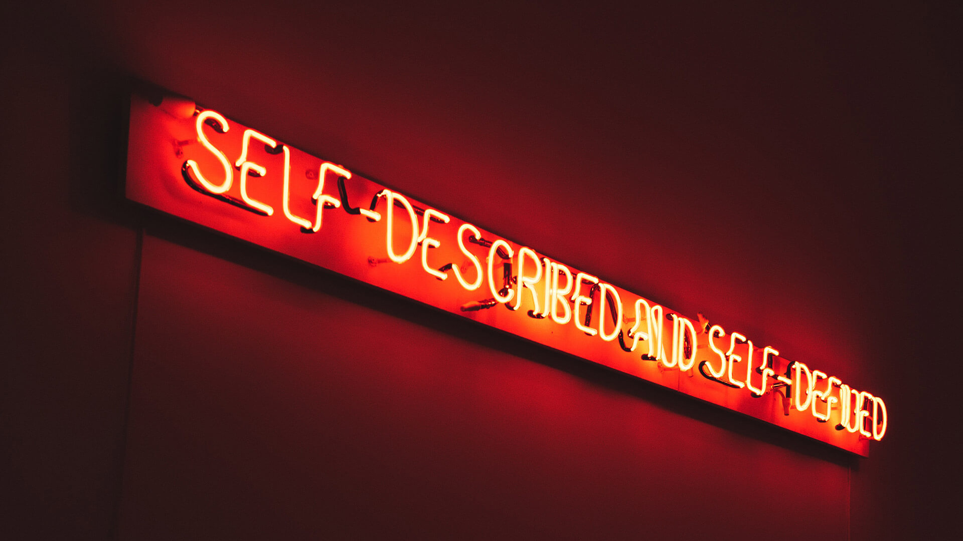 Neon Selbstbild Self Described Self defined